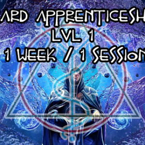 wizard apprentince lvl  1 1session