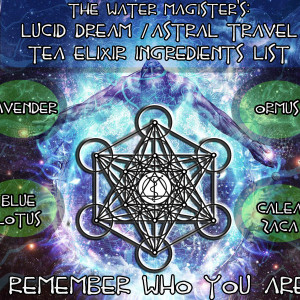 Dream Tea Water Magister Ingrediants